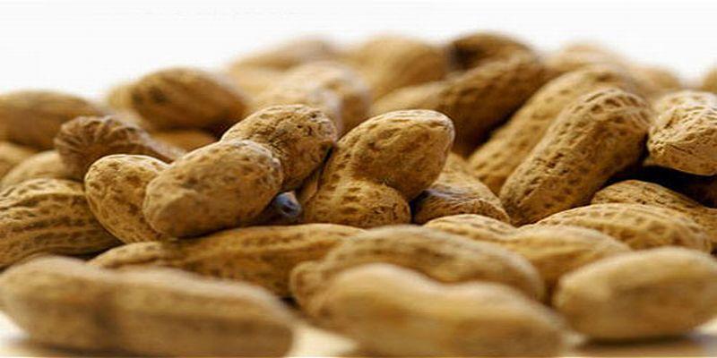 https: img-k.okeinfo.net content 2015 07 15 481 1182073 lima-makanan-pemicu-alergi-u4kZLiPTo6.jpg
