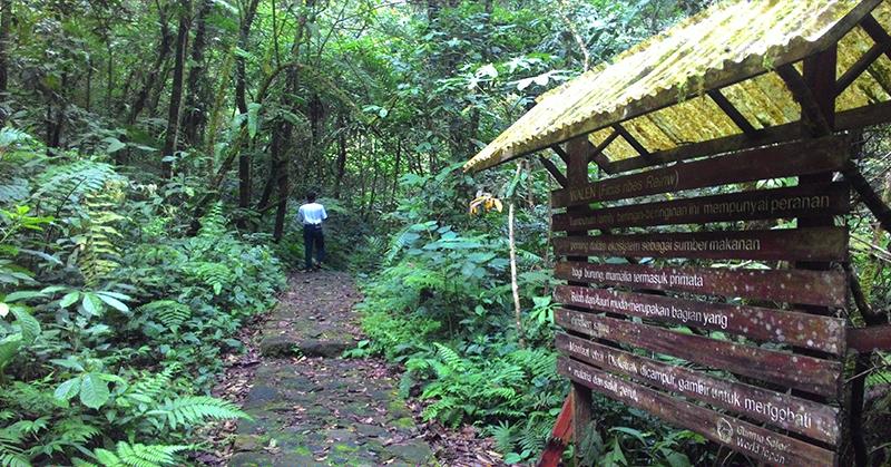 https: img-k.okeinfo.net content 2016 07 31 525 1451267 gunung-gede-pangrango-ditutup-untuk-aktivitas-pendakian-nTGOGU8hUj.jpg
