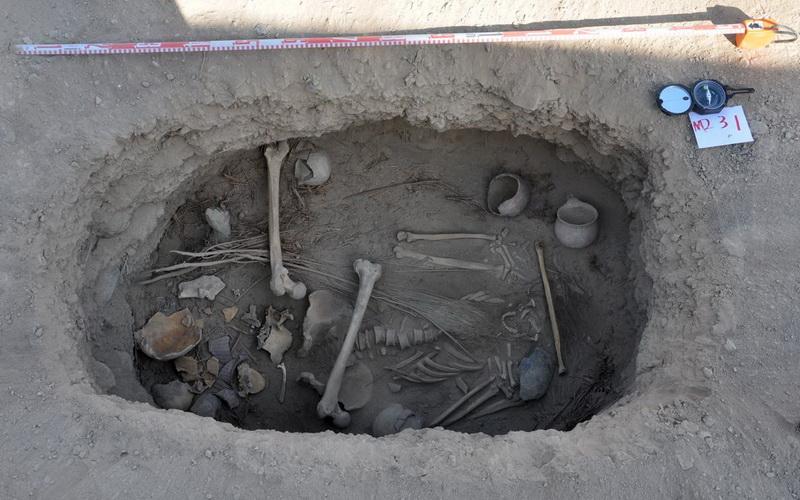 https: img-k.okeinfo.net content 2016 10 05 406 1506731 arkeolog-china-temukan-daun-ganja-terkubur-bersama-fosil-B43iTVb052.jpg