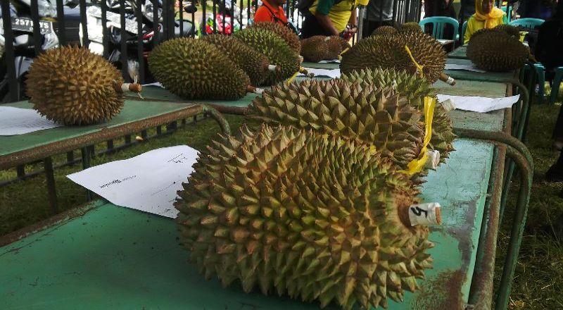 https: img-k.okeinfo.net content 2016 11 17 320 1544477 inspirasi-bisnis-nekat-resign-wanita-ini-sukses-jual-ketan-fla-durian-yj72FNEiGR.jpg