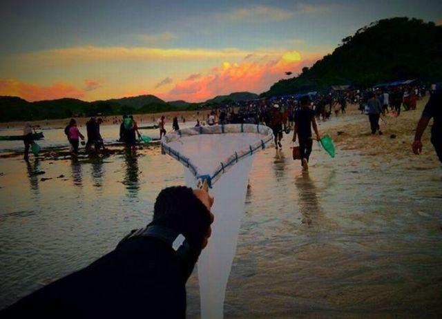 https: img-k.okeinfo.net content 2017 02 16 406 1620383 mengulik-sejarah-festival-bau-nyale-di-lombok-h7TdXgmdSu.JPG