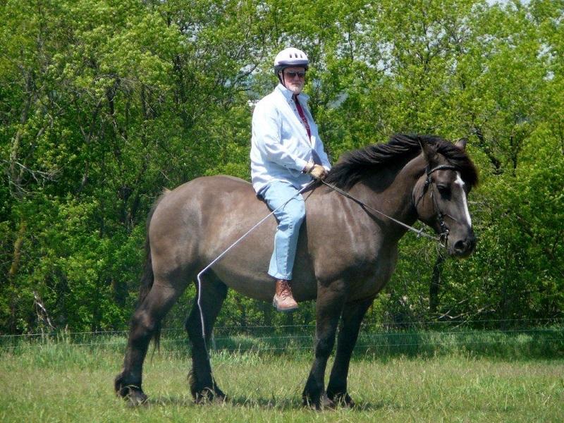 https: img-k.okeinfo.net content 2017 06 17 481 1718504 olahraga-berkuda-bisa-bantu-penyembuhan-stroke-tGHlr45Hgl.jpg