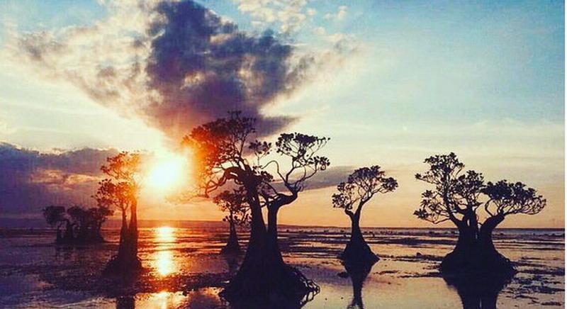 https img k.okeinfo.net content 2017 07 17 406 1738509 uncover indonesia pesona magis sunset di pantai walakiri F5fo2qeKTs.jpg