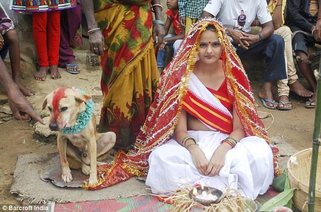 https: img-k.okeinfo.net content 2017 08 22 406 1760376 demi-hilangkan-kutukan-seorang-remaja-18-tahun-di-india-menikahi-anjing-liar-d7kprgpffO.jpg