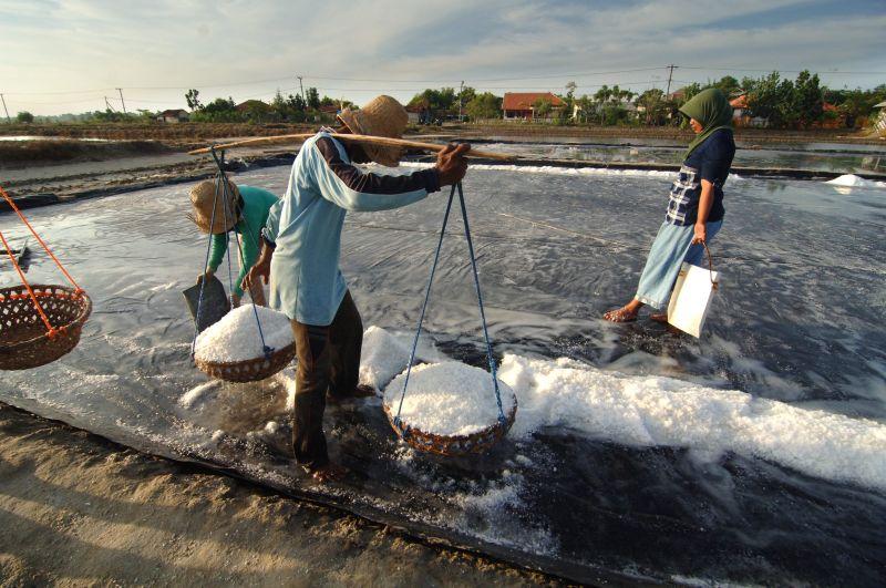 https: img-k.okeinfo.net content 2017 11 20 320 1817301 produksi-garam-industri-bppt-pt-garam-kerjasama-bangun-pabrik-di-kupang-NA8GmR1eo8.jpg