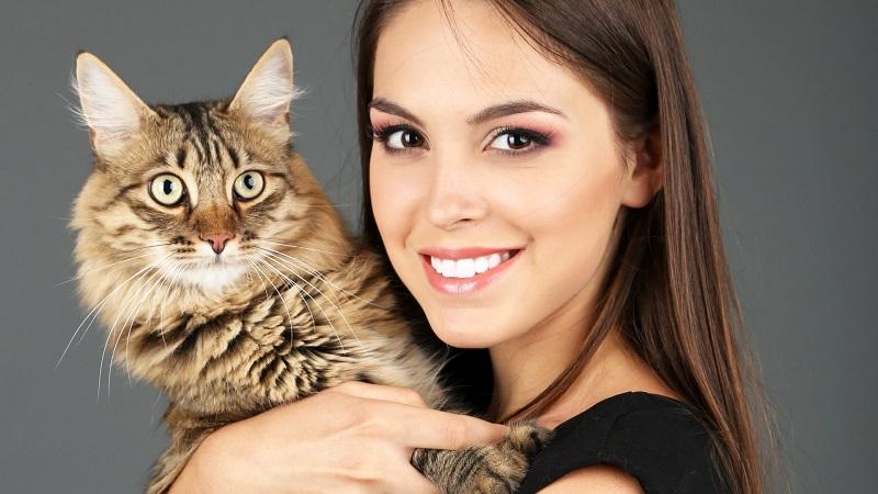 https: img-k.okeinfo.net content 2017 11 24 481 1819894 tak-usah-takut-toksoplasma-pelihara-kucing-bagus-untuk-kesehatan-lho-O5h2dPRjjb.jpg