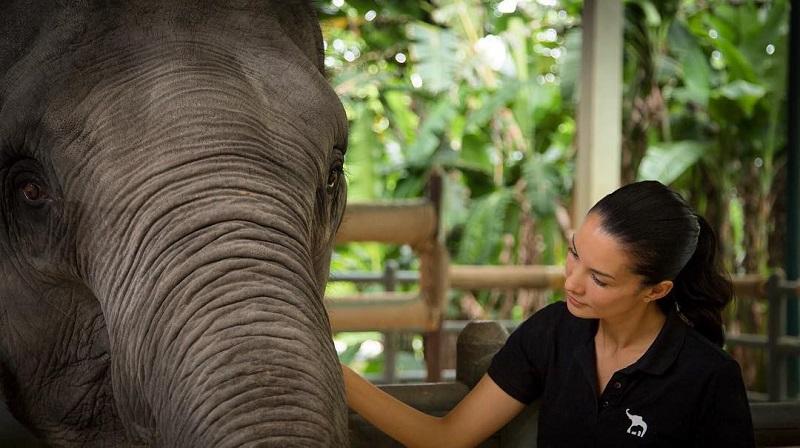 https: img-k.okeinfo.net content 2018 01 12 194 1844273 4-selebriti-indonesia-yang-jadi-aktivis-pelindung-hewan-bpu0ynA98o.jpg