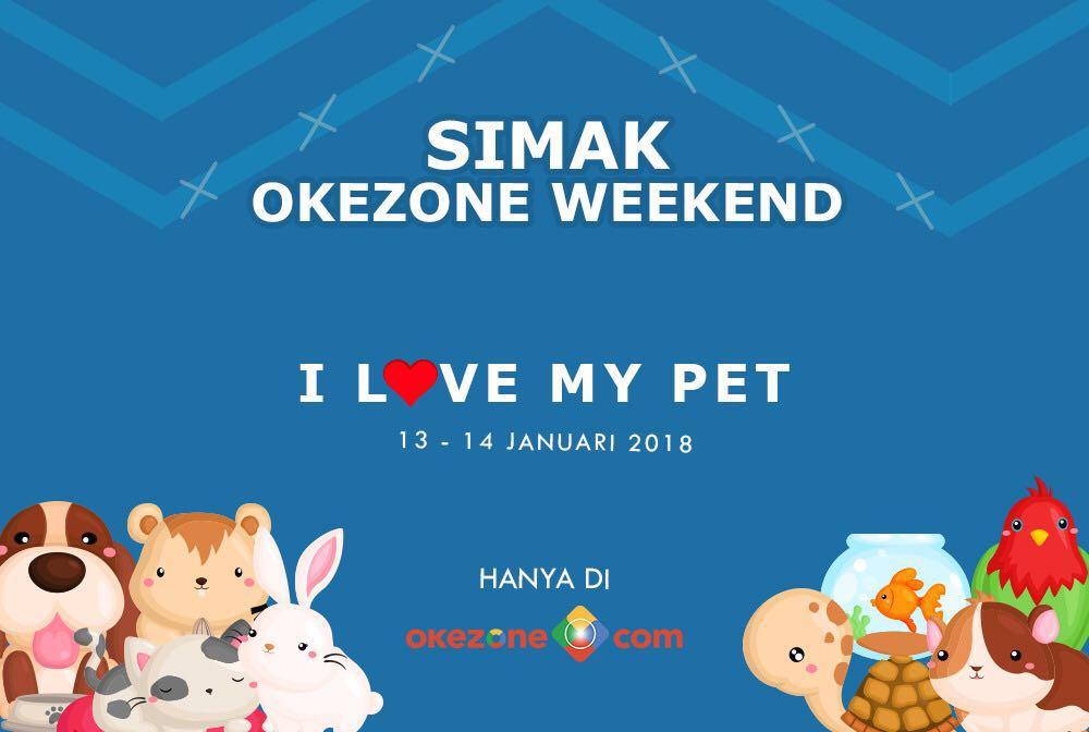 https: img-k.okeinfo.net content 2018 01 12 196 1844311 intip-perawatan-mahal-hewan-kesayangan-selebriti-hingga-kisah-haru-pertemanan-hewan-di-okezone-weekend-dvHqm02vb8.jpg