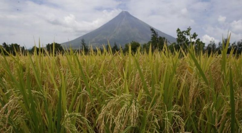 https: img-k.okeinfo.net content 2018 01 14 18 1844680 filipina-tingkatkan-status-gunung-mayon-warga-dievakuasi-9DUdJBXLfr.jpg