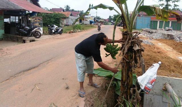 https: img-k.okeinfo.net content 2018 01 14 340 1844704 jalan-tak-kunjung-diperbaiki-warga-tanami-pohon-pisang-R0NCol5llG.jpg