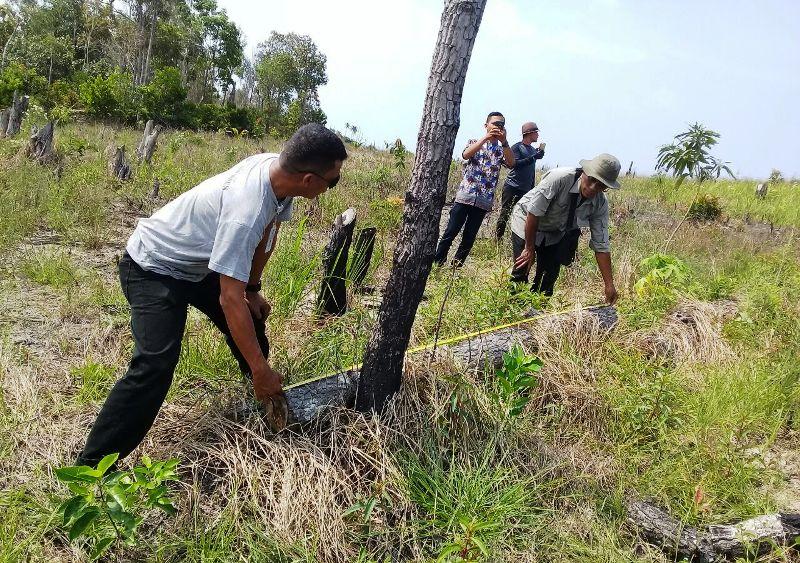 https: img-k.okeinfo.net content 2018 01 14 340 1844706 hutan-lindung-pejem-di-bangka-rusak-anggota-dprd-diduga-terlibat-QTZIzg9DMr.jpg