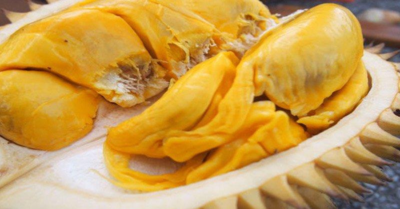 https: img-k.okeinfo.net content 2018 02 01 298 1853405 4-fakta-buah-durian-belum-banyak-diketahui-salah-satunya-tingkatkan-energi-JiK1mC0Fq8.jpg