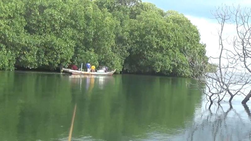https: img-k.okeinfo.net content 2018 02 05 340 1854924 nelayan-belitung-timur-hilang-diterkam-buaya-LdxZNOkNlJ.jpg