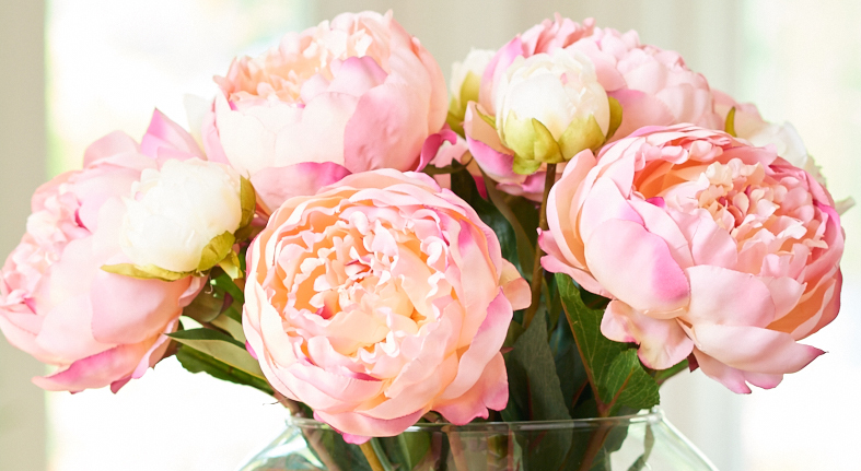 https: img-k.okeinfo.net content 2018 02 13 194 1859041 bunga-peony-khas-paris-bisa-dijadikan-parfum-rambut-UaNpRRoME2.jpg