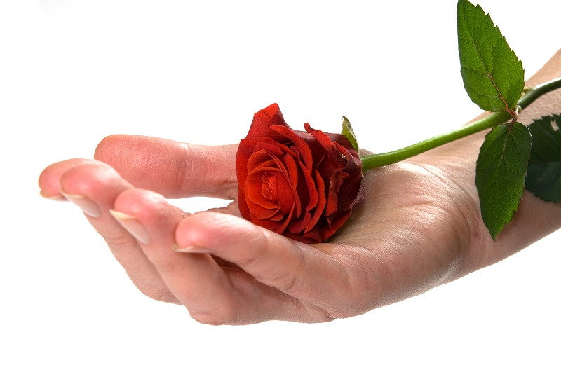 https: img-k.okeinfo.net content 2018 02 13 196 1859171 saat-valentine-mawar-merah-menjadi-barang-haram-di-arab-saudi-zsa5qw3Koa.jpg