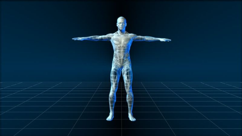 https: img-k.okeinfo.net content 2018 03 09 56 1870425 9-hal-unik-tentang-tubuh-manusia-yang-jarang-diketahui-SL3swIZ7jU.jpg