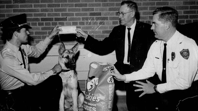https: img-k.okeinfo.net content 2018 03 12 18 1871495 militer-as-bentuk-korps-anjing-untuk-perang-dunia-ii-psvYXPRLxe.jpg