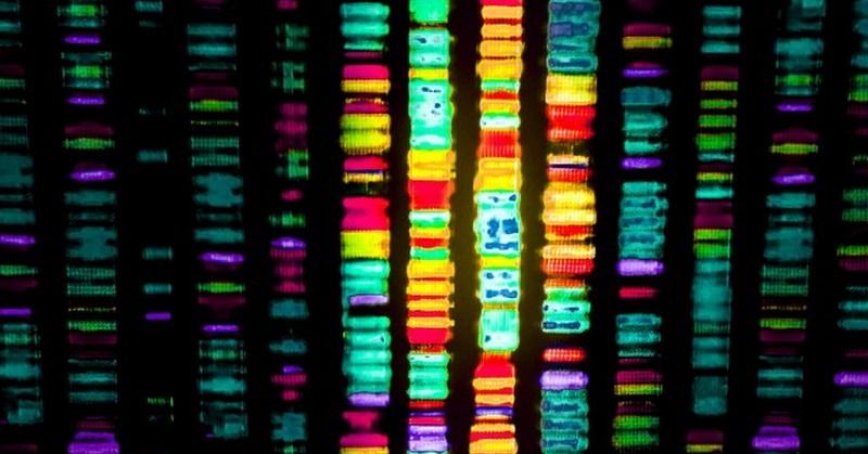 https: img-k.okeinfo.net content 2018 03 20 56 1875248 ilmuwan-usung-terapi-gen-untuk-menyembuhkan-penyakit-oPqeUSmlJs.jpg
