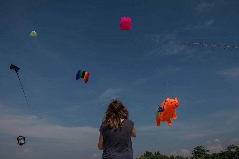 https: img-k.okeinfo.net content 2018 05 15 406 1898509 pelayang-dari-6-negara-terbangkan-puluhan-layang-layang-dalam-rhino-kites-festival-wq6RXQK6X0.jpg