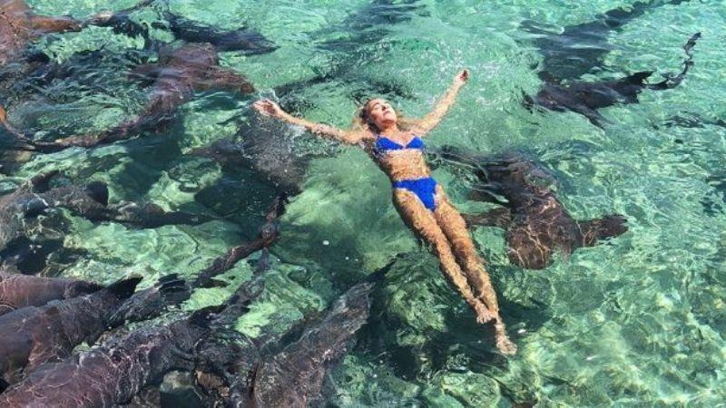 https: img-k.okeinfo.net content 2018 07 12 406 1921368 berlibur-ke-bahama-model-instagram-ini-malah-digigit-hiu-qfcIr5GOUY.jpg