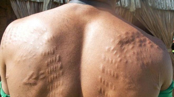 https: img-k.okeinfo.net content 2018 08 30 18 1943400 kisah-sejumlah-pria-papua-nugini-menyayat-kulit-agar-mirip-buaya-hmJMJ3m2sh.jpg