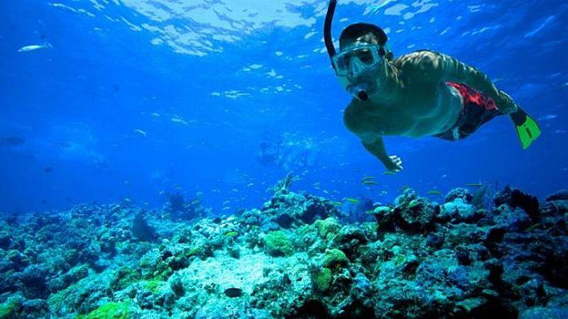 https: img-k.okeinfo.net content 2018 10 12 406 1963294 festival-pesona-raja-ampat-tawarkan-wisata-snorkeling-terbaik-dunia-QSsRqDNeWH.jpg