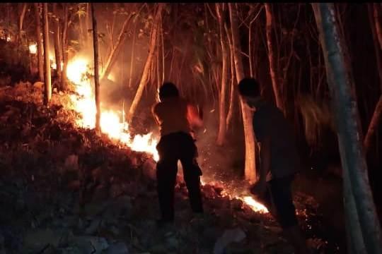https: img-k.okeinfo.net content 2018 10 15 512 1963981 basarnas-pantau-kemungkinan-pendaki-terjebak-di-kebakaran-gunung-merbabu-yRBdSbuseU.jpeg