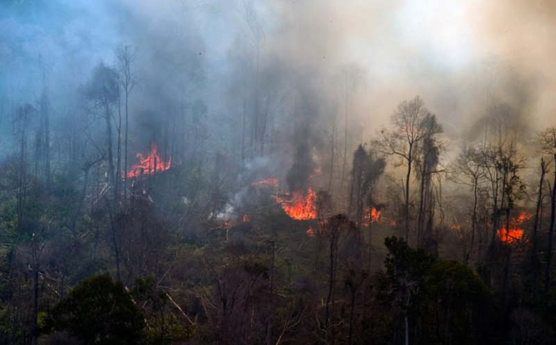 https: img-k.okeinfo.net content 2018 10 16 512 1964780 tantangan-berat-pemadaman-api-di-gunung-merbabu-8o1BUr6YY3.jpg