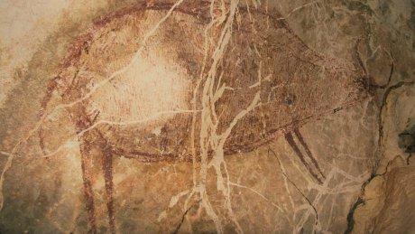 https: img-k.okeinfo.net content 2018 11 09 340 1975374 lukisan-kuno-dari-40-ribu-tahun-lalu-ditemukan-di-gua-kalimantan-cjpAVF0jNx.jpg