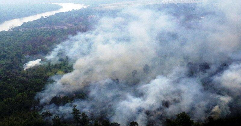 https: img-k.okeinfo.net content 2018 11 12 340 1976514 potensi-kebakaran-hutan-2019-meningkat-karena-dampak-el-nino-woCyOGeJe0.jpg