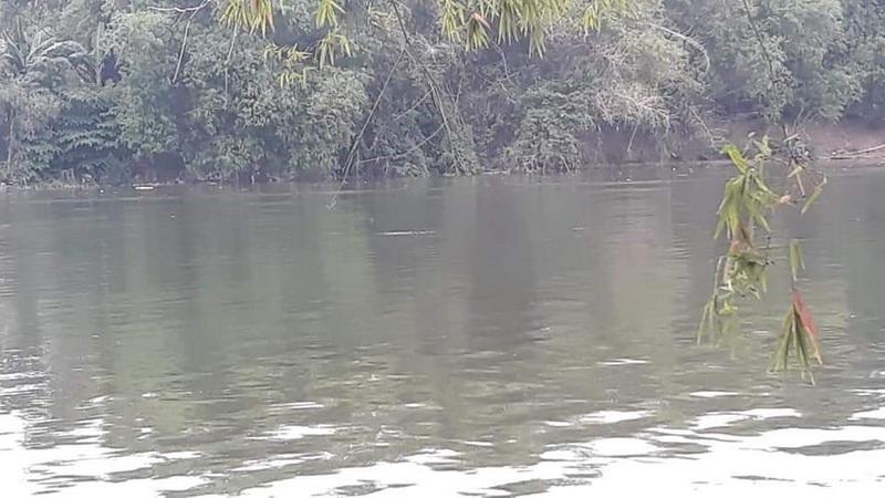 https: img-k.okeinfo.net content 2018 11 16 519 1978870 petugas-yakin-buaya-di-sungai-bengawan-solo-bergeser-untuk-cari-makan-iOBdsuxI3Q.jpg