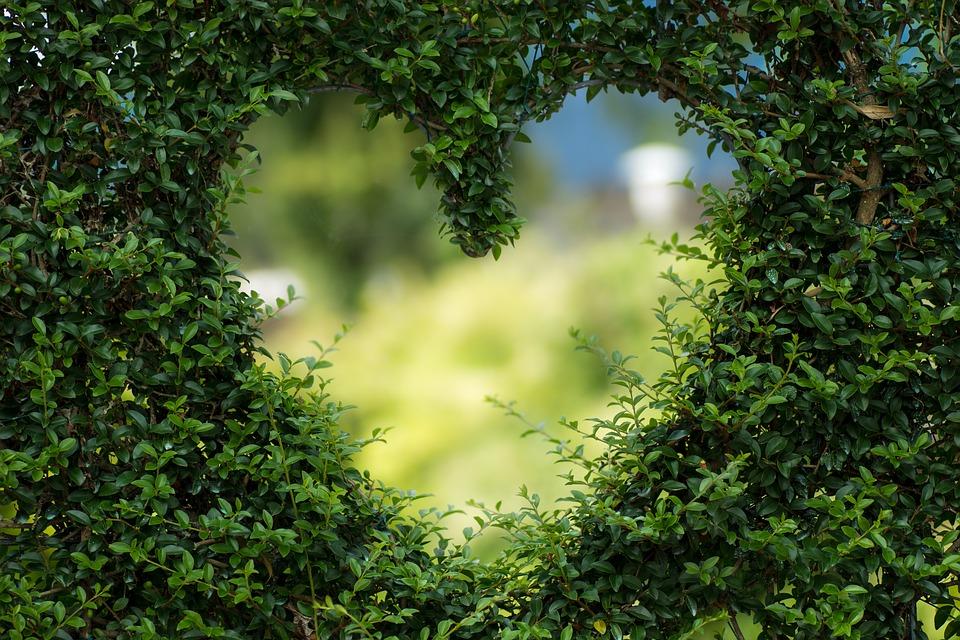 https: img-k.okeinfo.net content 2018 11 20 196 1980131 3-kisah-romantis-nabi-muhammad-saw-bersama-istri-yang-bisa-ditiru-pasangan-z3YktbWuAD.jpg