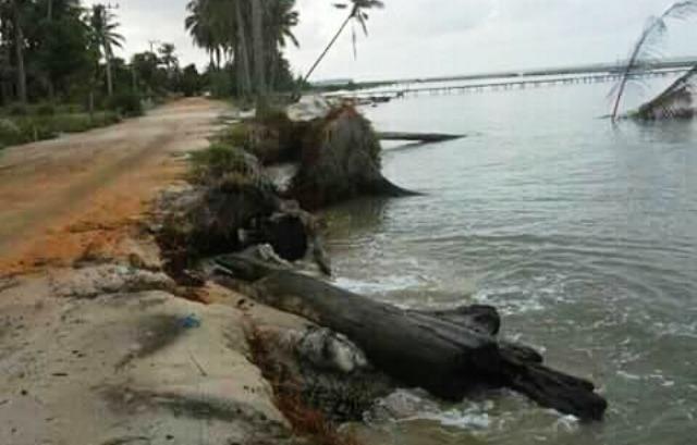 https: img-k.okeinfo.net content 2018 11 29 338 1984799 2-perkampungan-di-pesisir-laut-muaragembong-hilang-e1L6S2wVND.jpeg