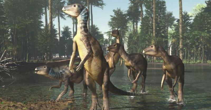 https: img-k.okeinfo.net content 2018 12 05 56 1987365 ditemukan-dinosaurus-spesies-baru-diyakini-hidup-100-juta-tahun-lalu-Xg67NsKvZU.jpg