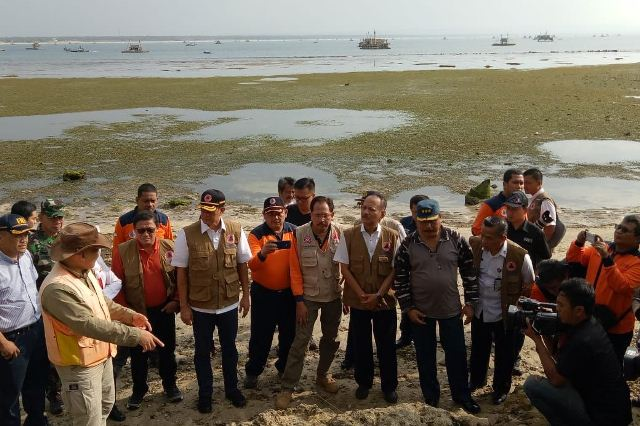 https: img-k.okeinfo.net content 2019 01 12 337 2003626 bnpb-hutan-pantai-dapat-kurangi-risiko-bahaya-tsunami-y67h8ykzwg.jpg