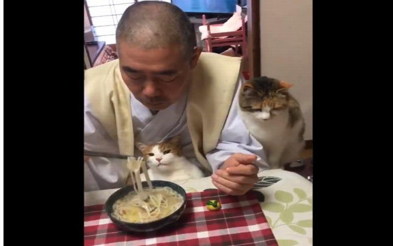 https: img-k.okeinfo.net content 2019 01 28 298 2010545 makan-bareng-kucing-kepala-biarawan-ini-viral-dsnYwz2xSK.jpg