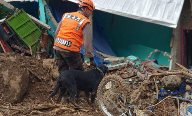 https: img-k.okeinfo.net content 2019 01 29 609 2010938 anjing-pelacak-temukan-3-jasad-korban-longsor-di-gowa-nh2H3Jj1Ki.JPG