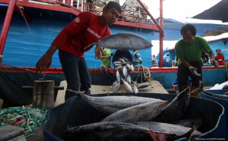 https: img-k.okeinfo.net content 2019 02 01 320 2012511 10-negara-penghasil-ikan-terbesar-di-dunia-ada-indonesia-9Y2rnzFCGq.jpg