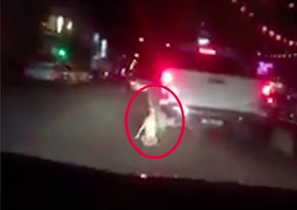 https: img-k.okeinfo.net content 2019 02 12 18 2016941 video-seekor-anjing-diseret-di-belakang-truk-di-malaysia-viral-satu-orang-ditangkap-dx5MbbHrc5.jpg