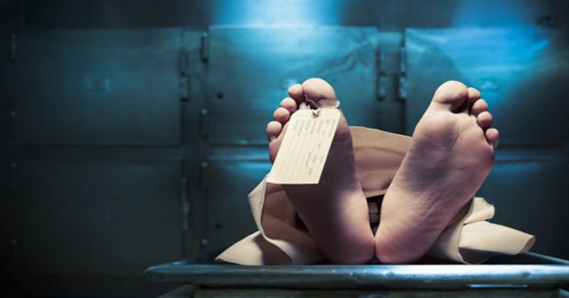 https: img-k.okeinfo.net content 2019 03 12 338 2029048 siswi-kelas-6-sd-di-depok-ditemukan-tewas-di-toilet-sekolah-m5y617CmVG.jpg