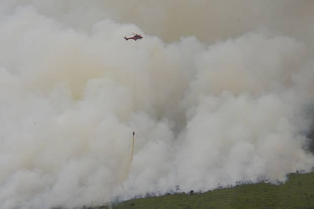 https: img-k.okeinfo.net content 2019 03 12 340 2028704 10-helikopter-dan-1-pesawat-dikerahkan-untuk-atasi-kebakaran-hutan-riau-lPxKCIxmoq.jpg