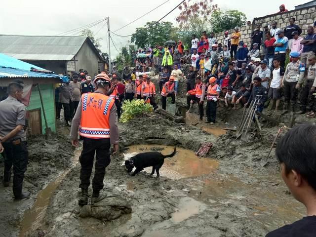 https: img-k.okeinfo.net content 2019 03 20 340 2032467 belasan-anjing-pelacak-temukan-15-jenazah-korban-banjir-bandang-sentani-v0ECvNUVAX.jpg