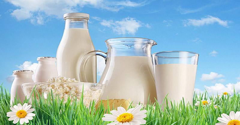 https: img-k.okeinfo.net content 2019 04 10 481 2041707 selain-telur-susu-sapi-juga-bisa-sebabkan-alergi-rjk2JP4xLo.jpg
