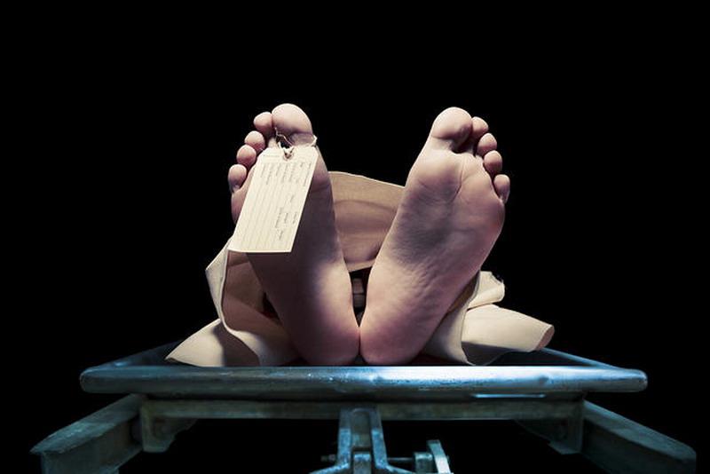 https: img-k.okeinfo.net content 2019 04 20 338 2045891 wanita-tewas-di-parkiran-hotel-sawah-besar-polisi-periksa-3-saksi-RU7RlU9ZMY.jpg