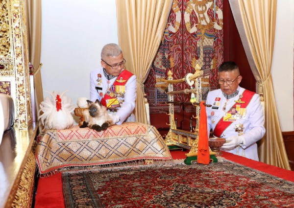 https: img-k.okeinfo.net content 2019 05 06 18 2052022 foto-kucing-dalam-penobatan-raja-buat-bingung-warga-thailand-t6C7Bvgi6J.jpg