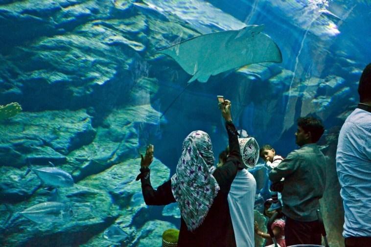 https: img-k.okeinfo.net content 2019 05 14 615 2055624 ini-5-tips-penting-untuk-traveler-muslim-SKn81yXxCa.jpg
