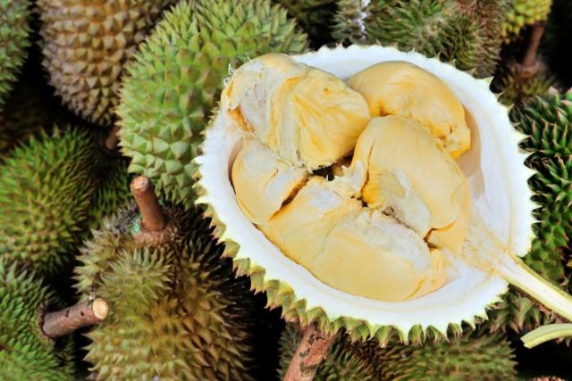 https: img-k.okeinfo.net content 2019 05 15 18 2056176 gara-gara-durian-seluruh-pengunjung-perpustakaan-dievakuasi-AE2k97PKig.jpg