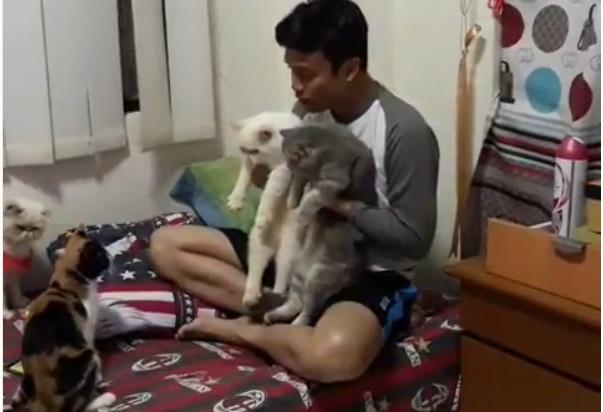 https: img-k.okeinfo.net content 2019 06 19 612 2068486 video-kocak-nikahkan-kucing-netizen-semoga-awet-gilanya-ya-7q0lm7UywN.jpg