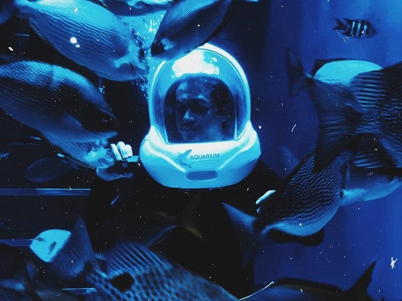 https: img-k.okeinfo.net content 2019 06 20 406 2068585 jakarta-aquarium-suguhkan-pencak-silat-underwater-dan-bikin-ondel-ondel-di-hut-dki-jakarta-8QWiQkveWa.jpg