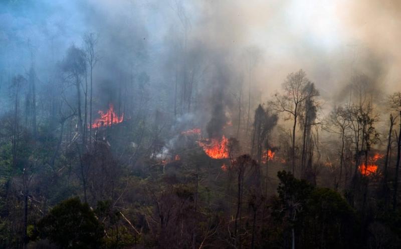 https: img-k.okeinfo.net content 2019 06 21 337 2069444 musim-kemarau-waspadai-kurang-air-hingga-kebakaran-hutan-QmFIH50UgL.jpg